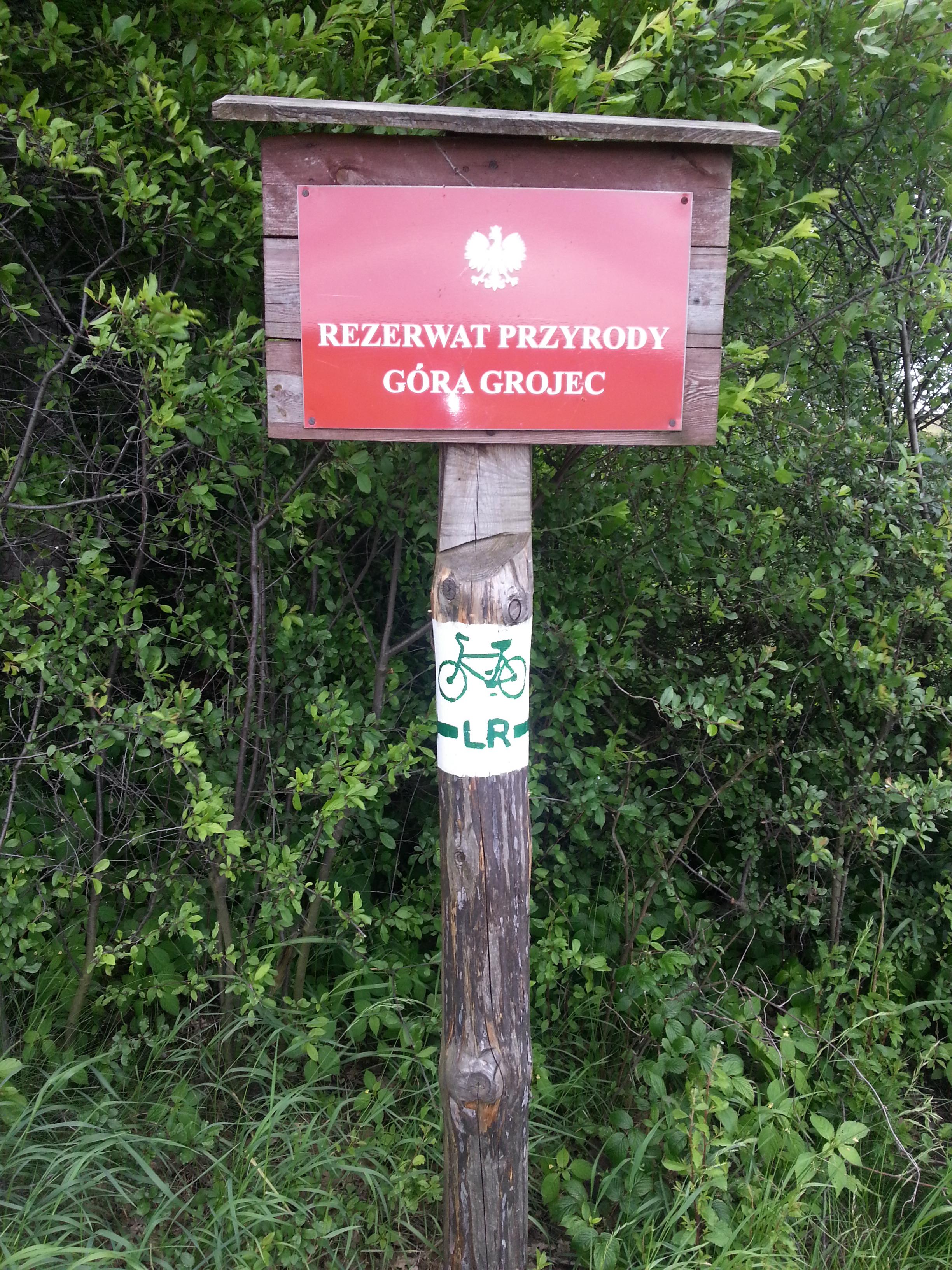 """Rezerwat """"Góra Grojec"""" koło Lubszy"""