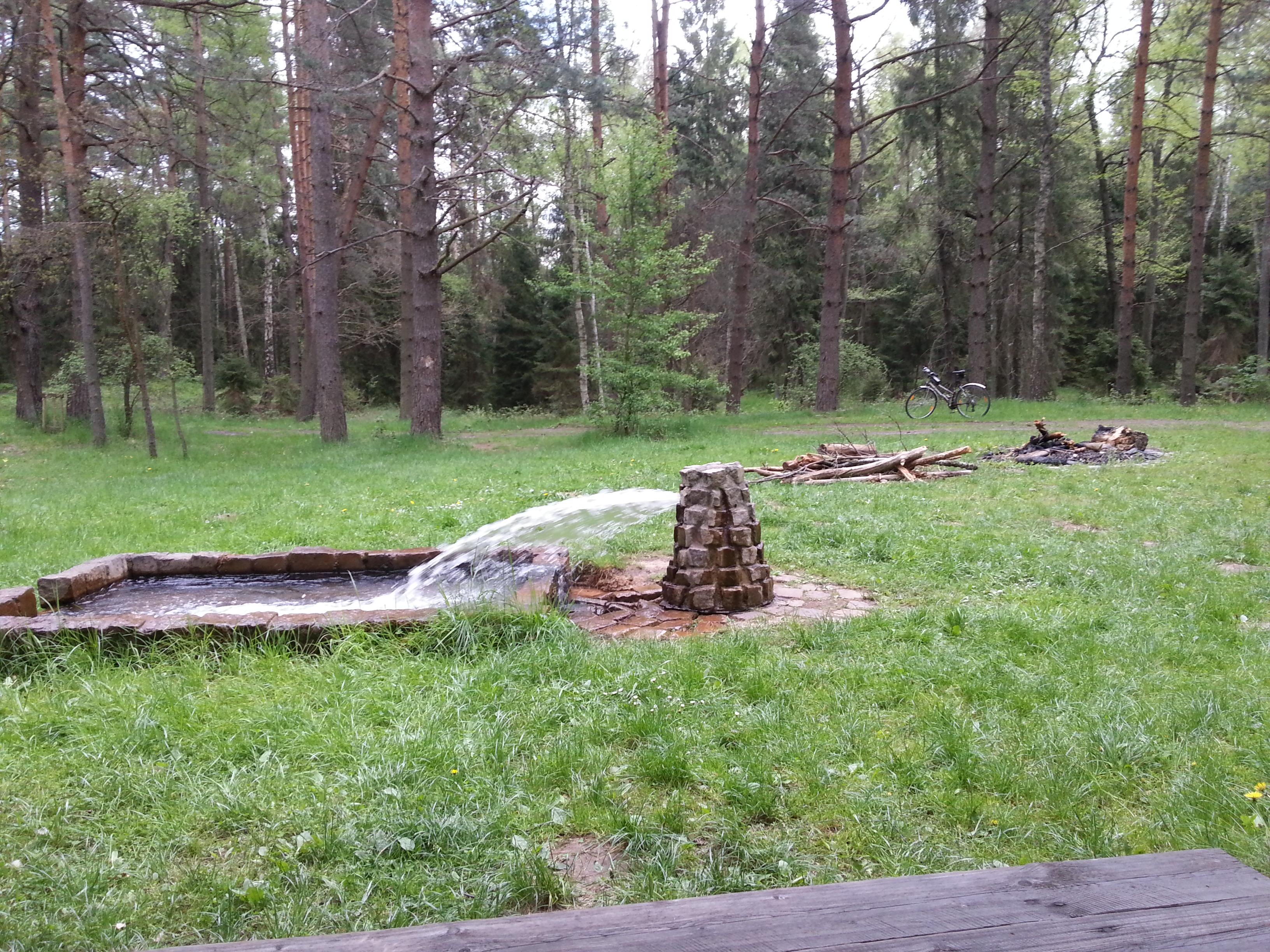 Żródełko przy uroczysku Krywałd (koło Bruśka)