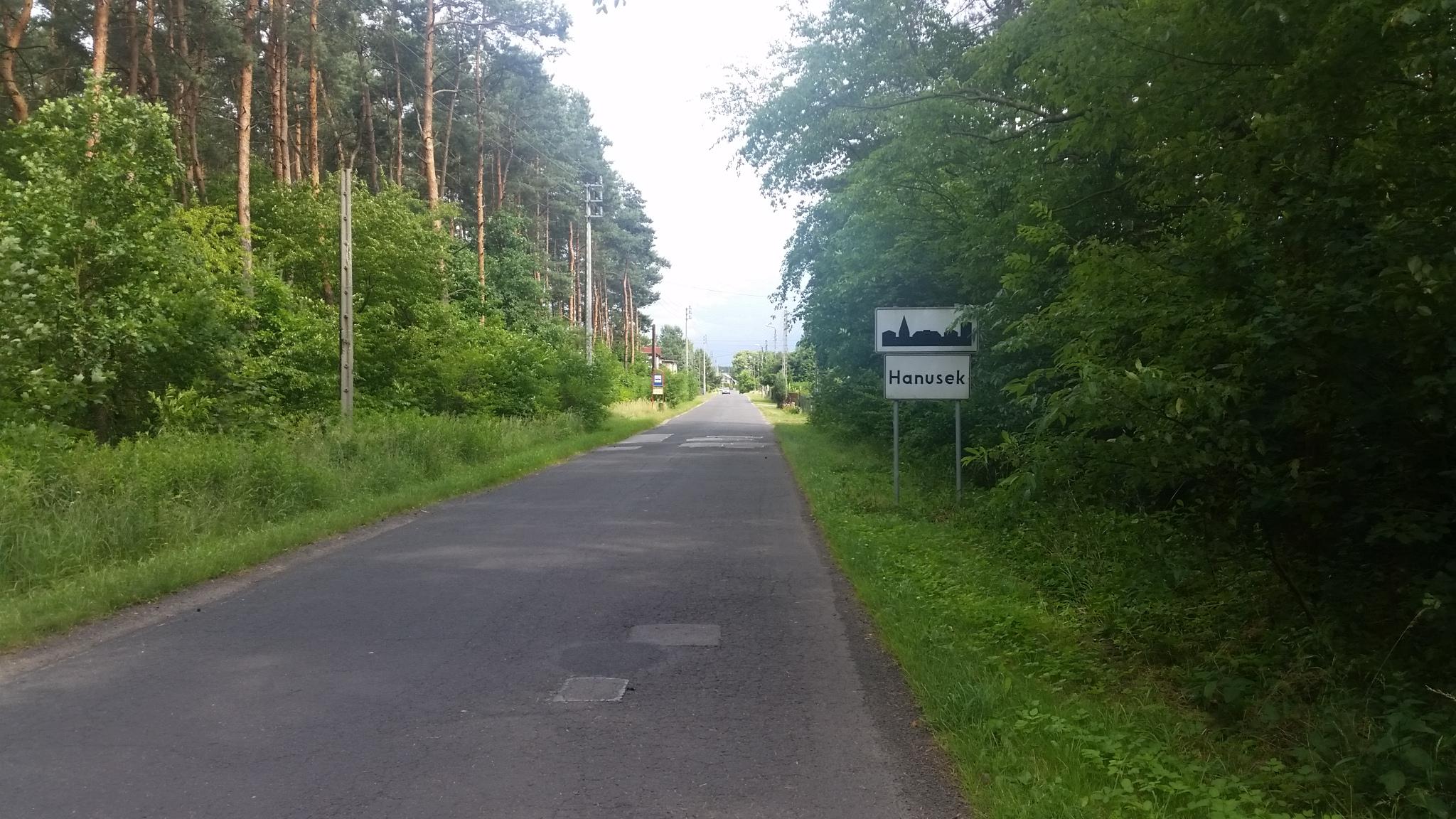 """""""Leśno Rajza w Hanusku koło Tworoga."""