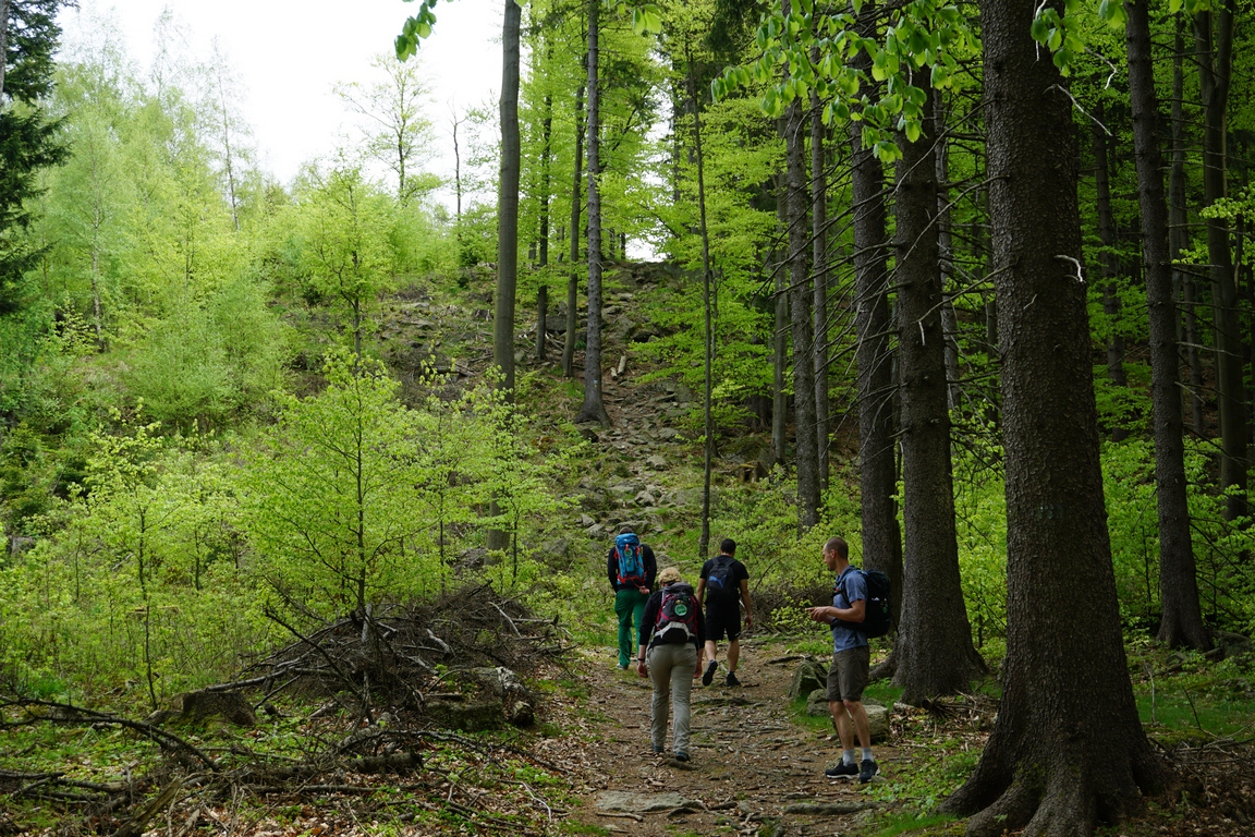 Podejście po kamieniach zielonym szlakiem