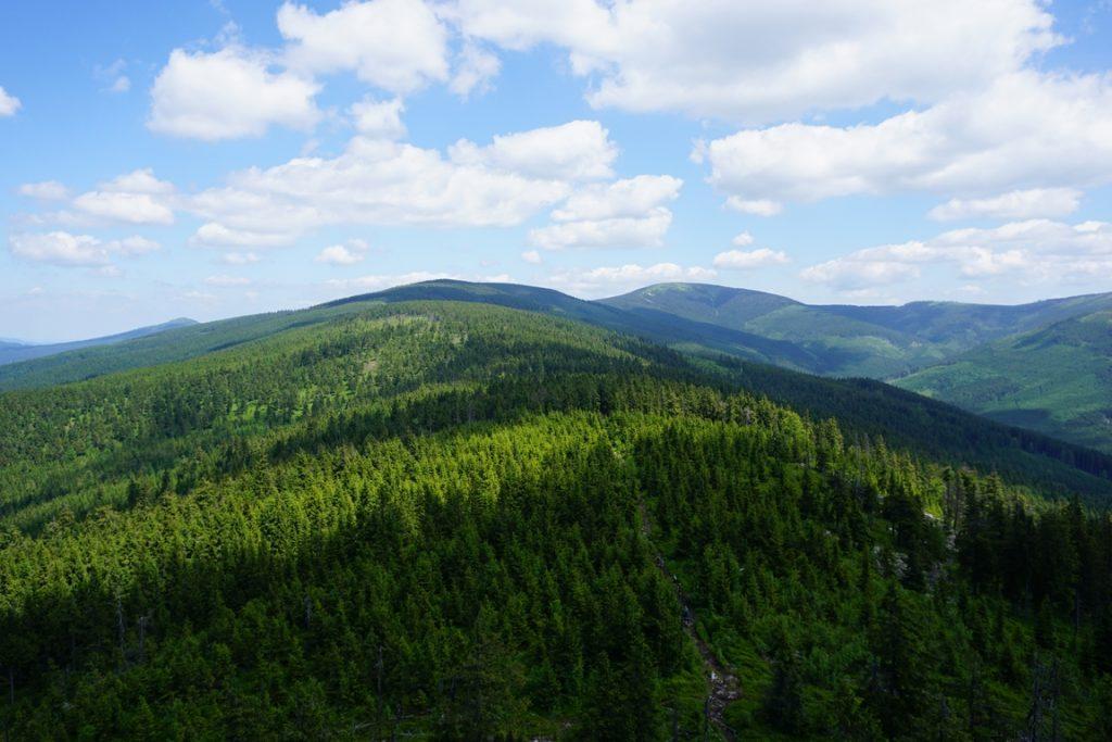 Panorama z wieży widokowej na Trójmorskim Wierchu. Widok w kierunku Śnieżnika.