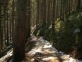babia góra 004 (Kopiowanie)